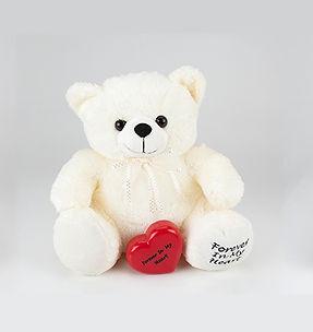 teddy_bear_lrg.jpg