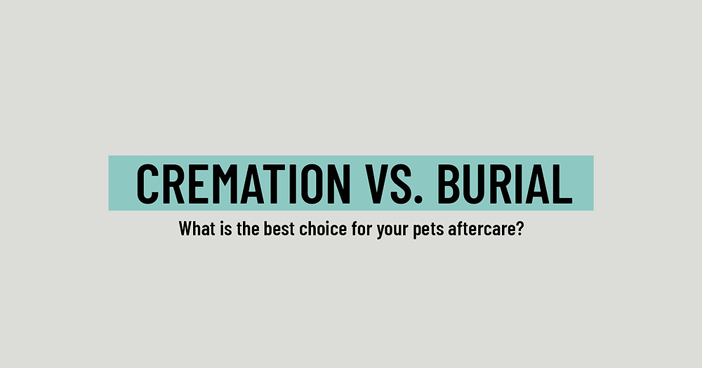 Pet Cremation or Burial?