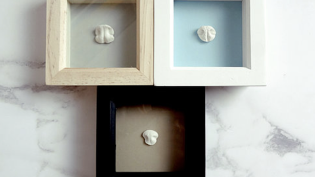 3D Nose Print in White Shadow Box