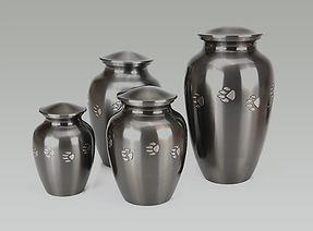 Brass Vass - Peaceful Waters Aquamation, San Diego, CA