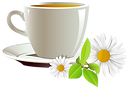 63458-and-coffee-cup-of-tea-cafe-daisies.png