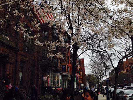 BOSTON: Red Sox e o Fenway Park