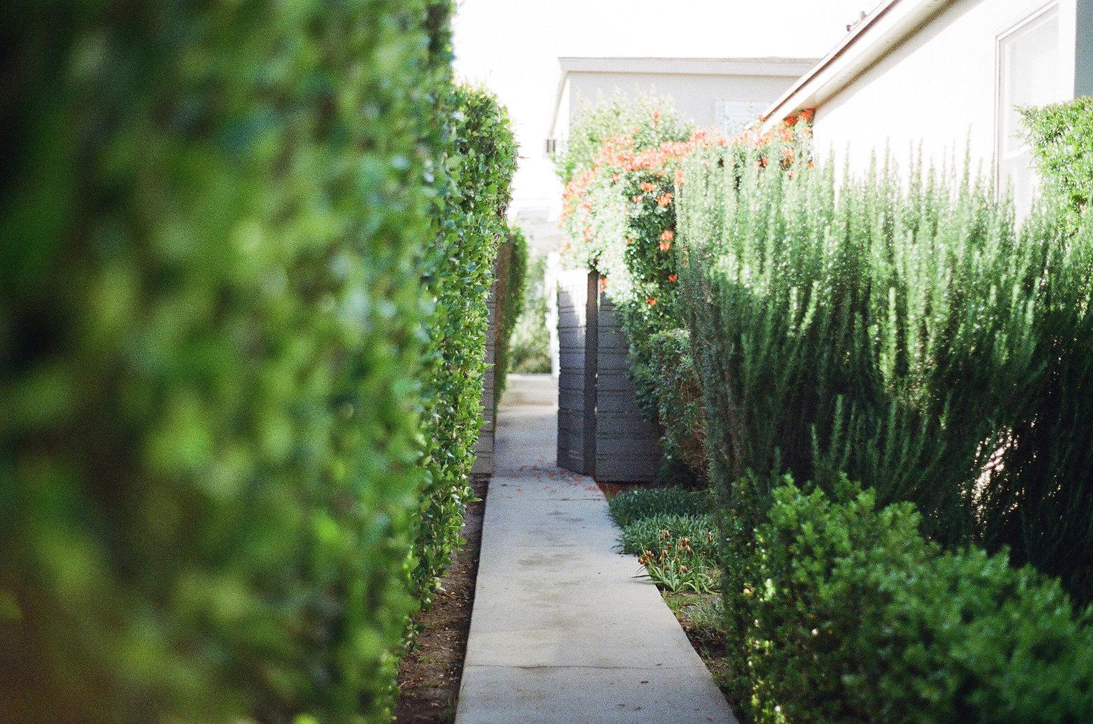 garden-way-2631-2.jpg