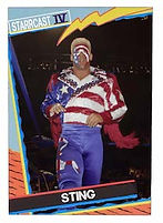 STING USA CARD.jpg