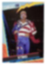 STING USA CARD.jpg