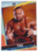 TAZ CARD.jpg