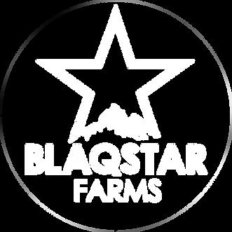 blaqstar-logo-white.png