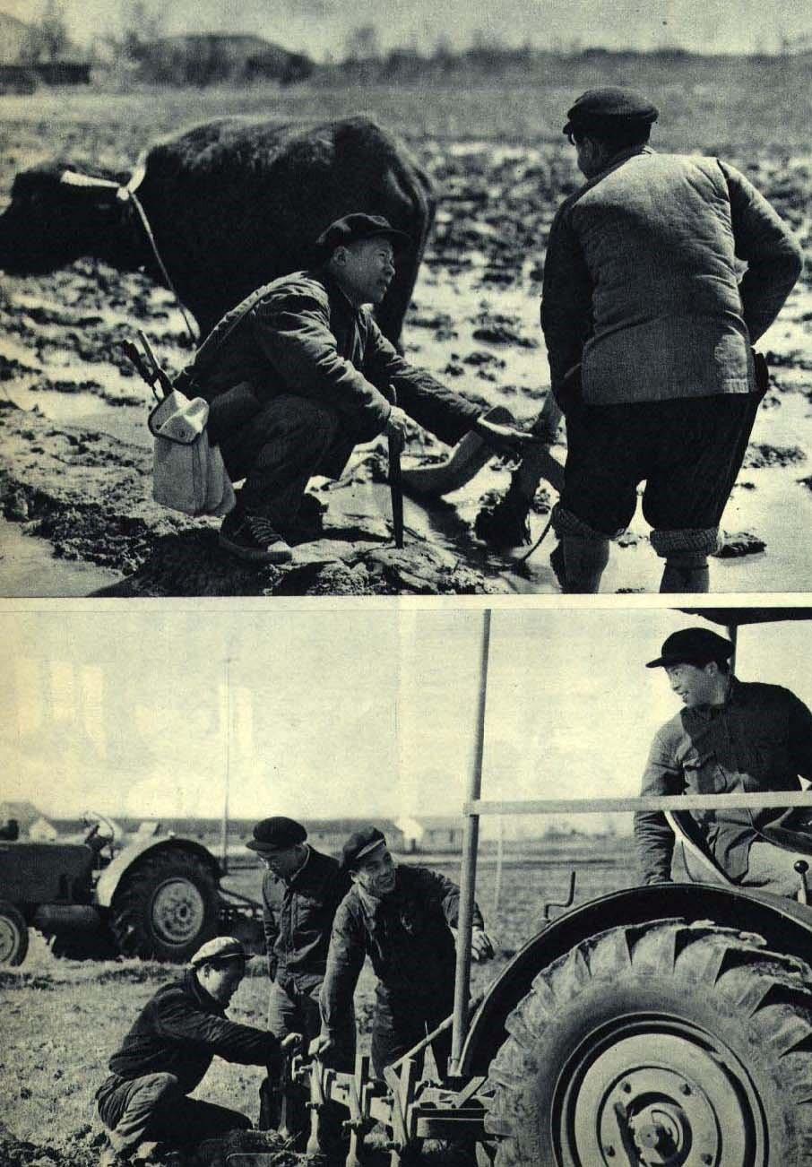 1962年工人下鄉運動
