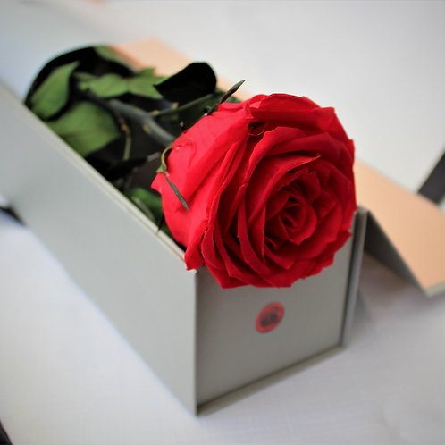 red long stem infinity preserved forever enduring roses hatbox bloombox bloom box gift decor wife groom love favour