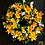 hand made daffodil wreath for your front door, crafted in our welsh studio as a gift for her