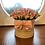 Thumbnail: 'Forever Love' Midi Bloom Box Bouquet of Roses