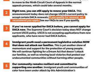 DACA Update on the Supreme Court's Decision