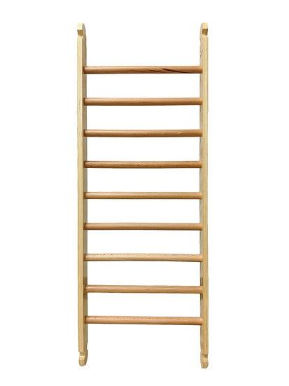 Climbing Ladder Play Ramp- Ladder Only