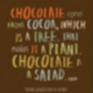 chocolate, cocoa, cacao, plant, salad