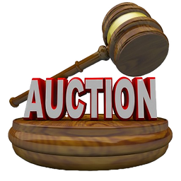12215131-auction_edited.png