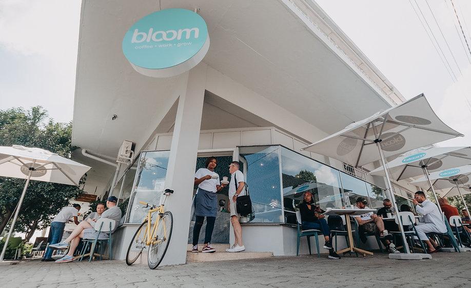 Bloom-6.jpg
