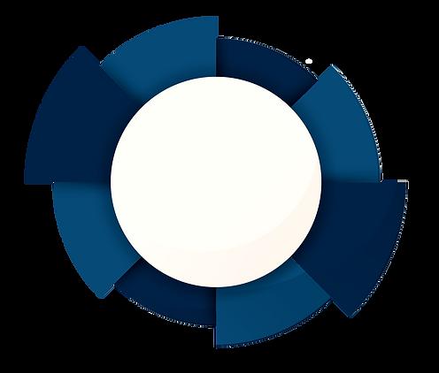 circle101_edited.png