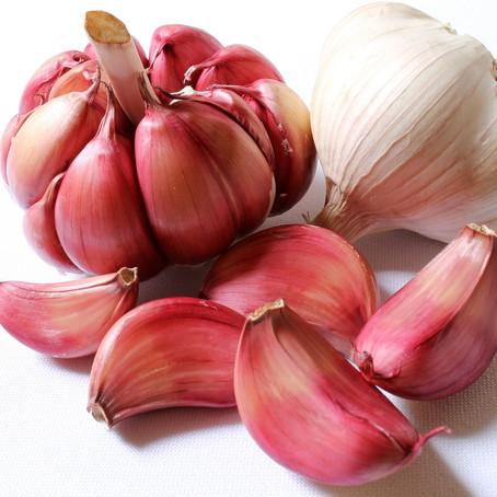 צמחי מרפא לטיפול בהליקובקטור פילורי