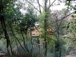 Cabane-du-Varon-Florieye-au-fond-des-Bois.jpg