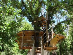 Lou-Pitchoun-la-terrasse-dans-les-arbres