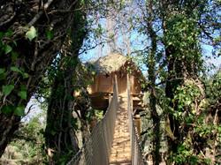 Cabane-Florieye-Passerelle.jpg