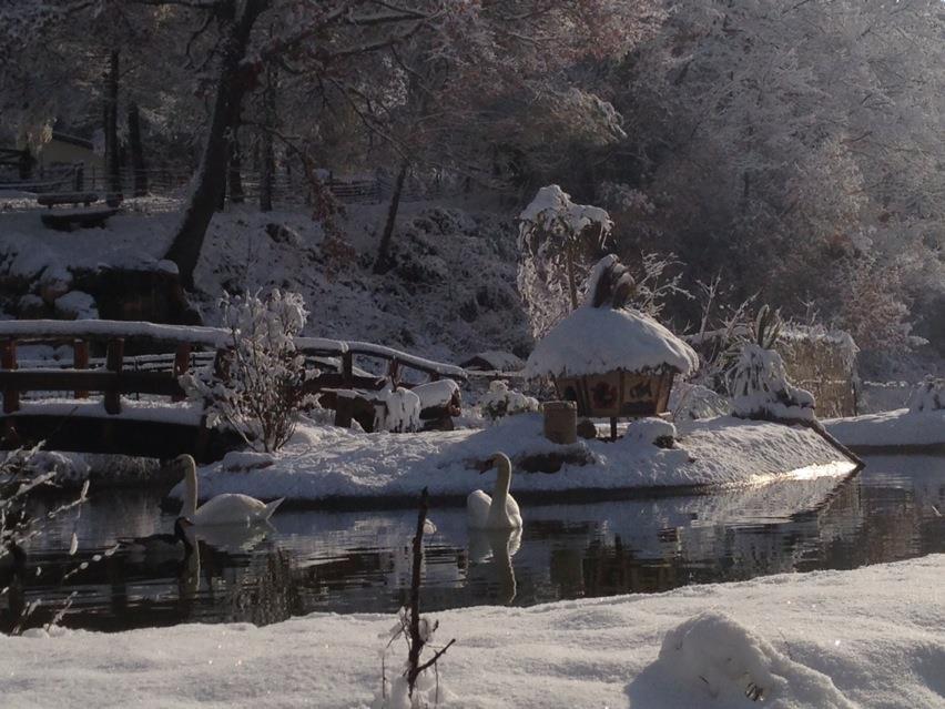 Le-Lac-des-Cabanes-du-Varon-sous-la-neige
