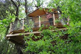 Cabane dans les arbres pour 6 personnes