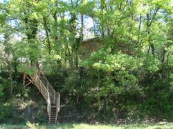 Lou-Cagnard-du-Varon-Blottie-dans-les-arbres