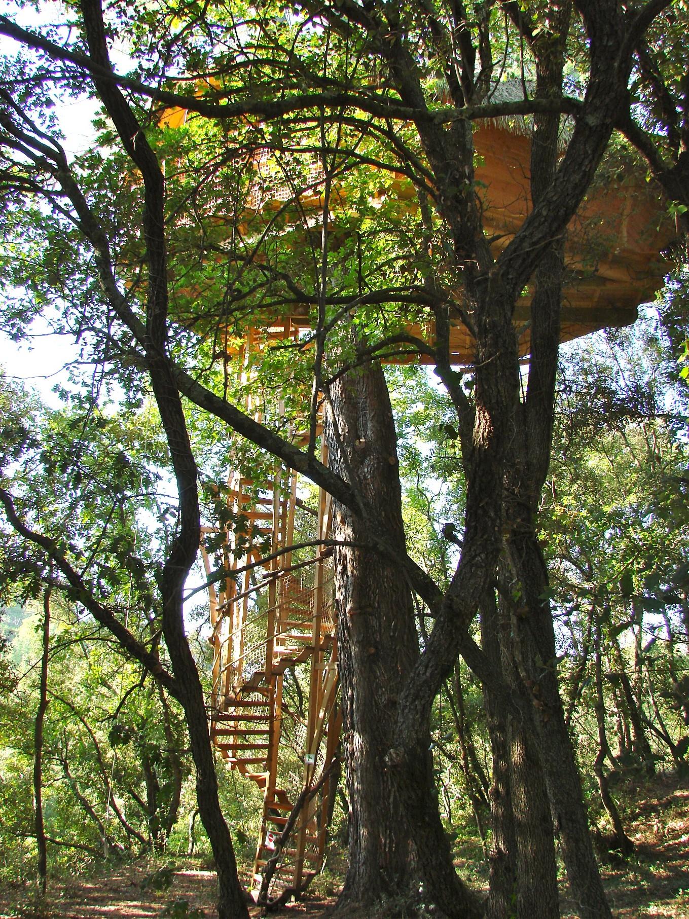 La-Cabane-et-son-escalier-de-dentelle
