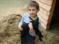 Les enfants ont le droit de caresser les animaux