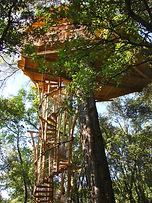 La cabane la plus haute à 10 m
