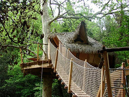 Pont de singe pour accéder à la cabane