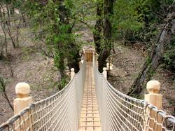 Passerelle-Pont-de-Singe-Varon.jpg