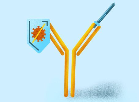 Investigadores norte-americanos descobrem anticorpo capaz de neutralizar o Covid-19