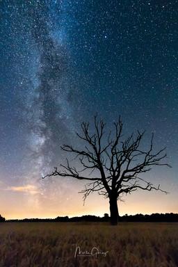 Milchstraße auf dem Lande