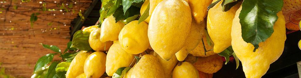 italia-costiera-amalfitana-limoni.jpg