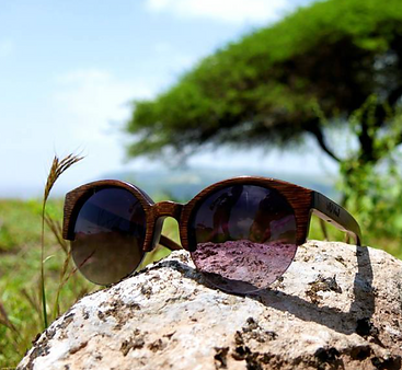 Wild Wood Sunglasses Watches Eco Friendly