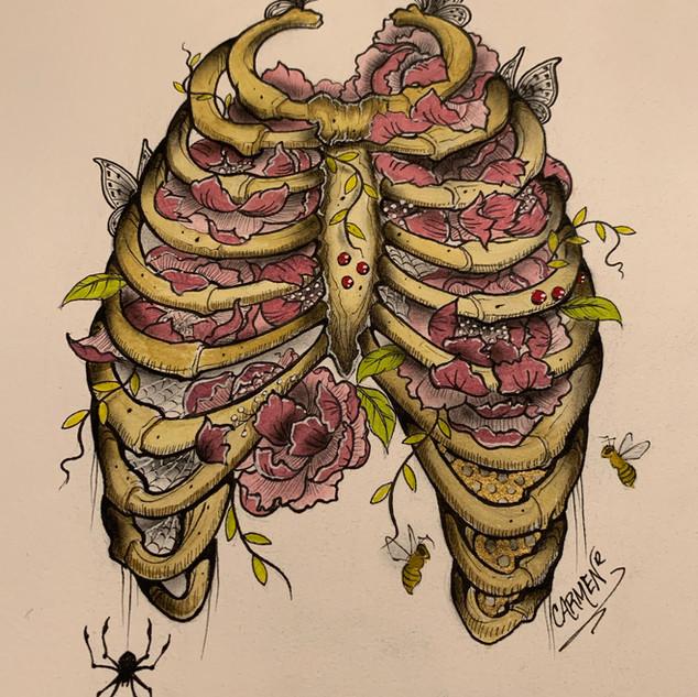 ribcage.jpg