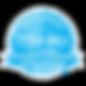 SAI_BadgeSizes_DigitalBadging_CSP-PO.png