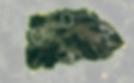Bildschirmfoto 2020-04-04 um 09.37.30.pn