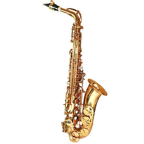 Aeolus Alto Saxophone N°900
