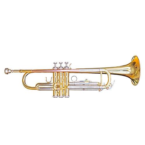 Aeolus Bb Trumpet N°500