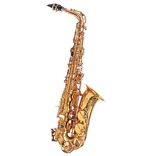 Bulcario Turroni Alto Saxophone