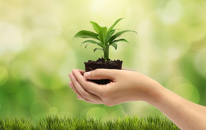 recticenter comprometido con el medio ambiente