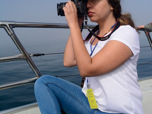 Capturing the Beauty of the Harbor