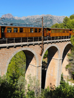 Train-and-Viadulct-.jpg