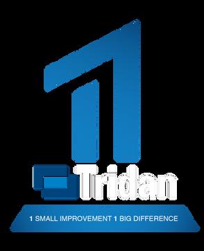 Tr1dan Campaign
