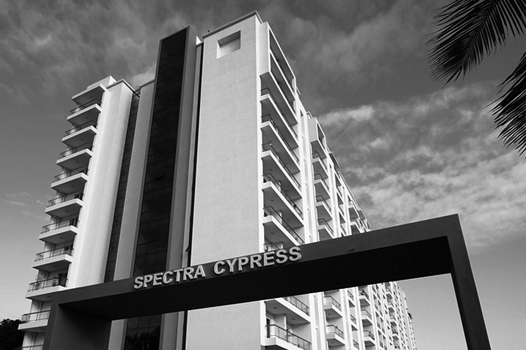 Spectra Cypress