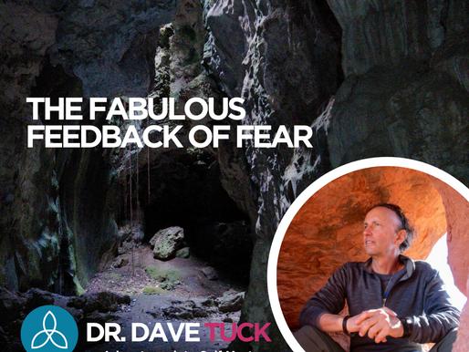 The fabulous feedback of fear