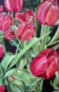 tulip-B.jpg